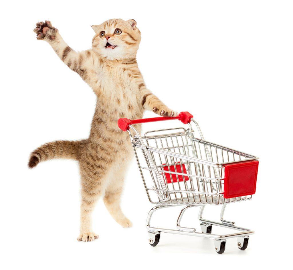 animalerie Alimentation chat animalerie 14