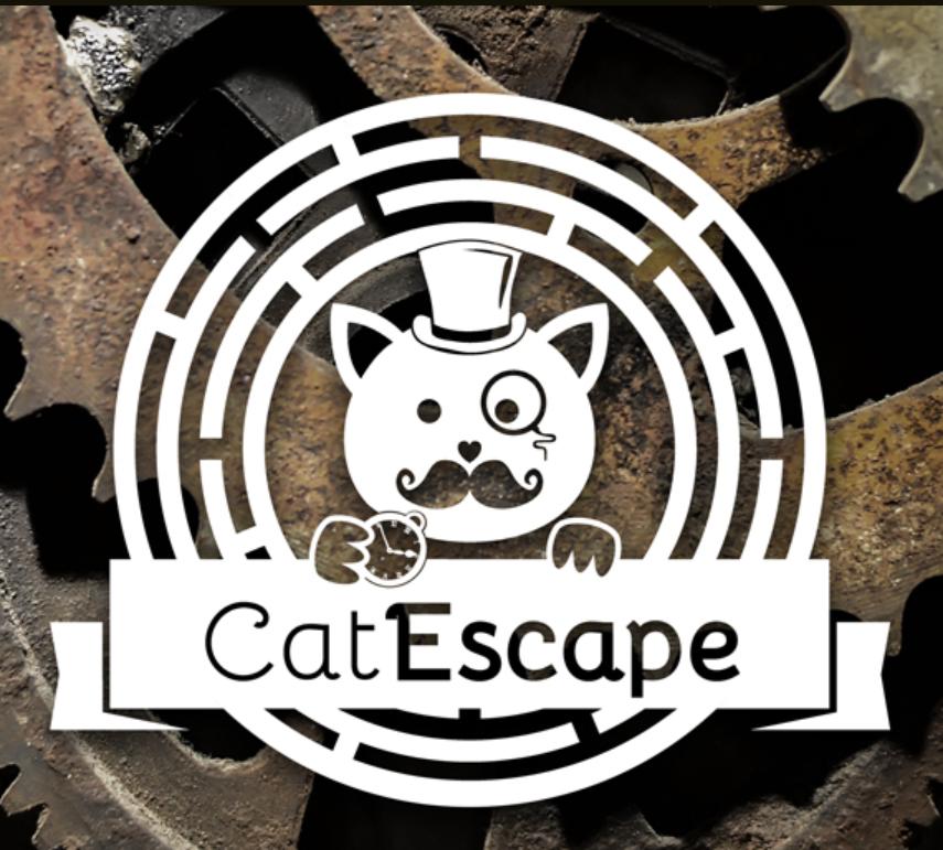 animalerie 01 GentleCat Lyon escapegame
