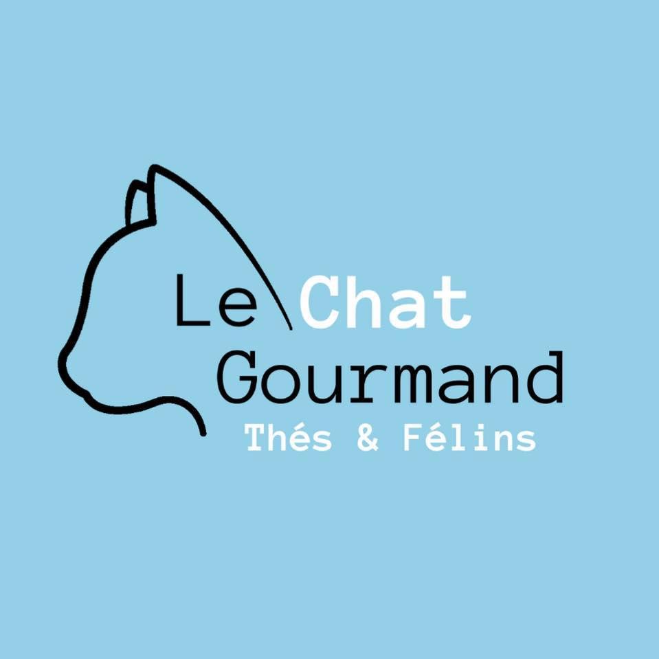 animalerie 04 LeChatGourmand Montpellier 01