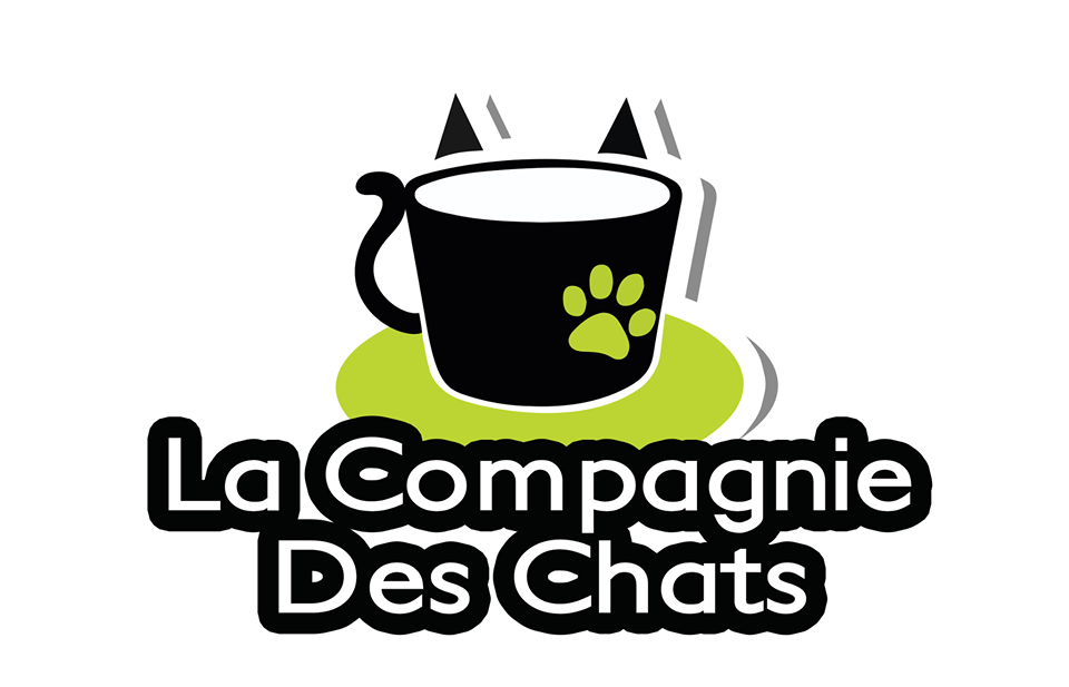 animalerie 11 LaCompagnieDesChats Avignon 01