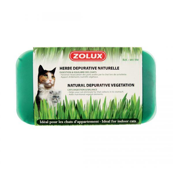 animalerie Zolux herbe depurative 00002680