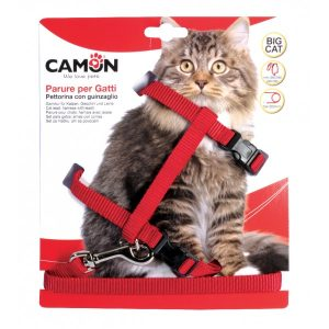 animalerie Distridog harnais grand chat DG020 rouge