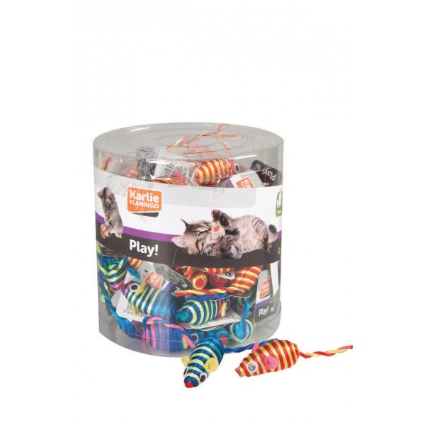 animalerie Distridog souris colorees 504362